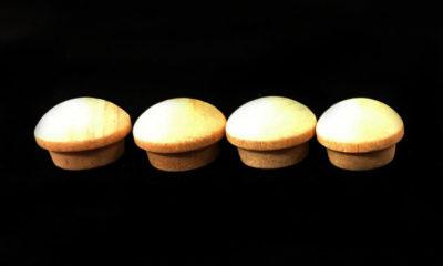 birch-mushroom-buttona