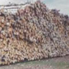 lumber-mill-05