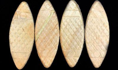 wood-joiner-biscuits
